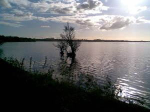 lough neagh 01