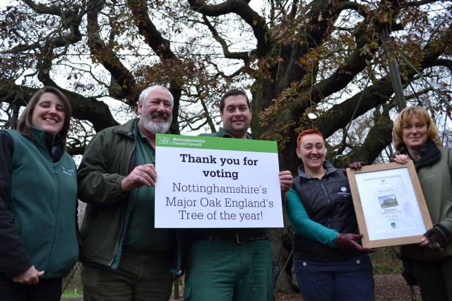 Winner!  Woodland Trust Head of Campaigning, Nikki Williams, presents the award certificate to members of the Sherwood Forest Trust, who accept the 'Tree of the Year' accolade on behalf of the Major Oak. L-R:  Nikki Williams,