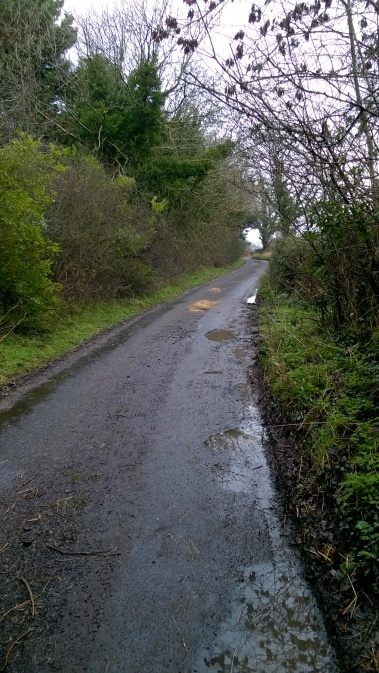 breagh lane 210116