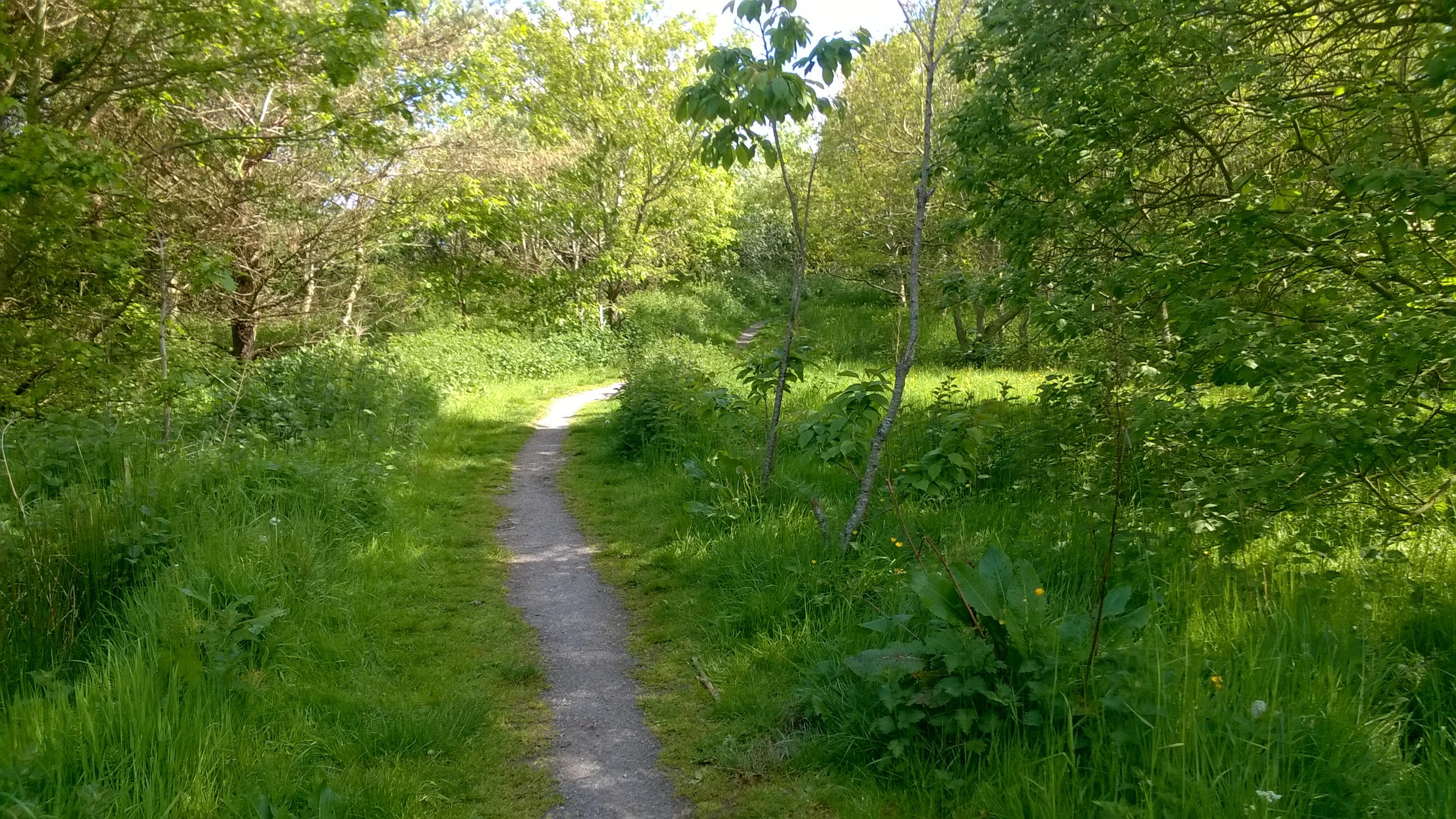6 paths